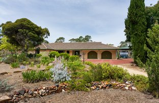 Picture of 56 Ranters Gully Road, Muckleford VIC 3451