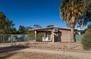 Picture of 7 Palmer Street, Gillen NT 0870