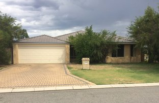 Picture of 10 Angulata Rd, Canning Vale WA 6155