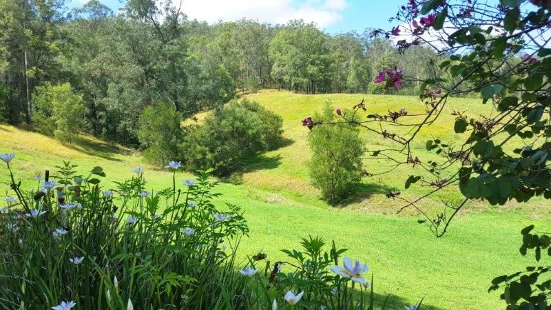 439 Upper Buckrabendinni Road, Buckra Bendinni NSW 2449, Image 0