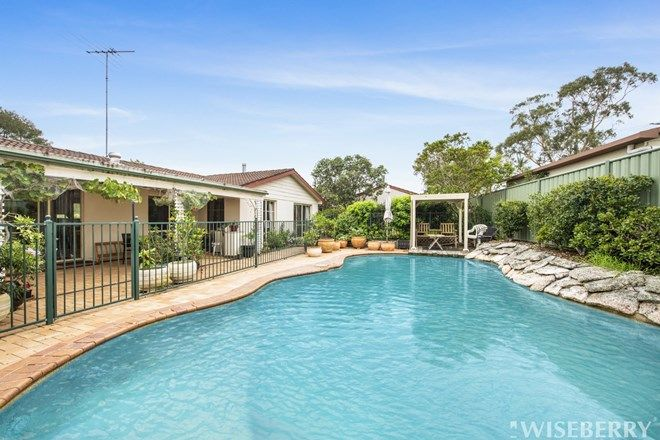 Picture of 8 McCutcheon Street, KARIONG NSW 2250