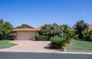 Picture of 38 Hornibrook Road, Dalyellup WA 6230