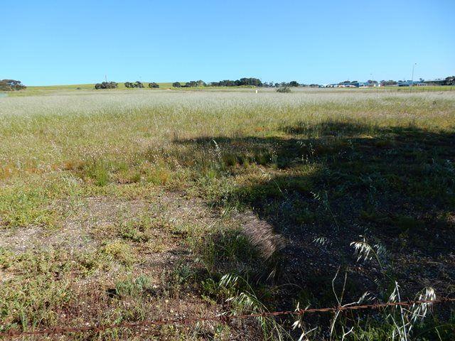 Lot 20 Bowman Road, Ardrossan SA 5571, Image 0