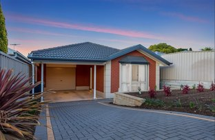 Picture of 18 Fairview Terrace, Clearview SA 5085
