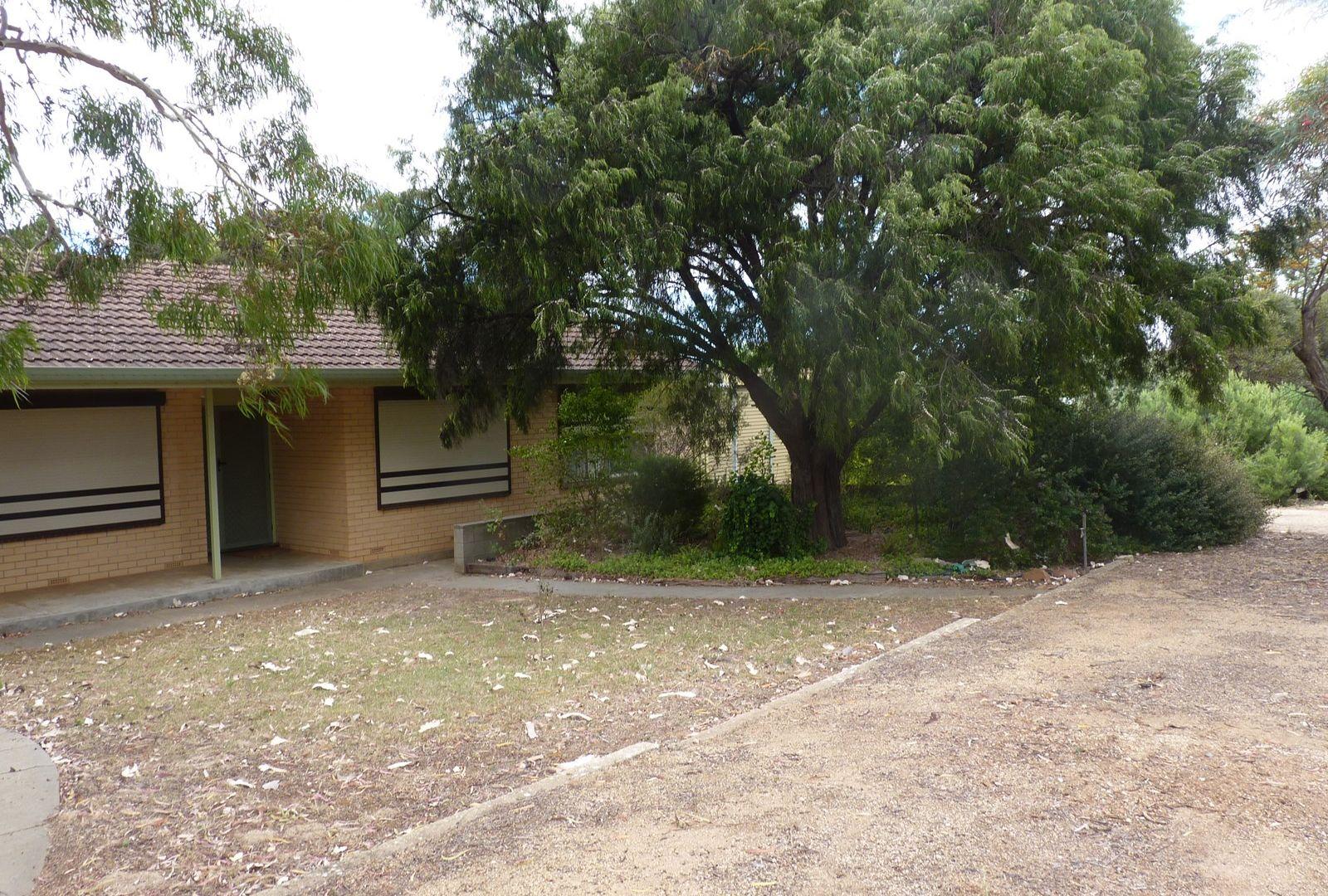 5 Bowman Terrace, Maitland SA 5573, Image 1