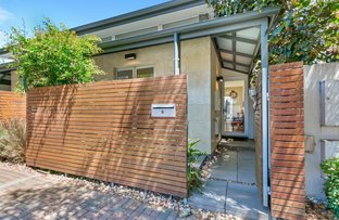 Picture of 6 Sheldon Street, Norwood SA 5067