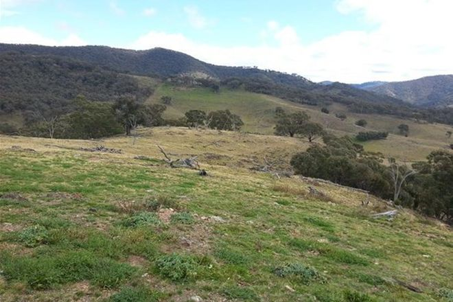 Picture of 2878 Hill End Road, AVISFORD NSW 2850