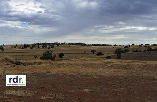 Picture of 297 Dufty's Lane, Myall Creek NSW 2403