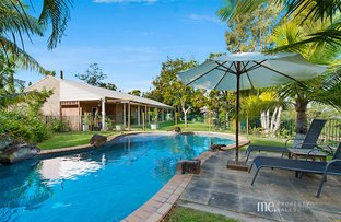 Picture of 9 Logan Court, Clear Mountain QLD 4500