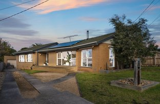 Picture of 3 Mayrah Court, Grovedale VIC 3216
