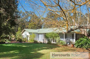 Picture of 14 Bunyip Road, Yalyalup WA 6280