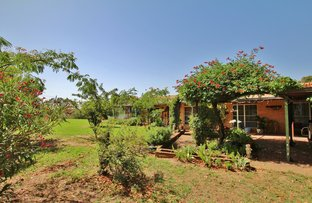 Picture of 60 Blackett Avenue, Young NSW 2594