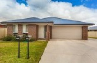Picture of 47 Royce Crescent, Lavington NSW 2641