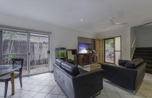 Picture of 2/53-67 Nautilus Street, Port Douglas QLD 4877