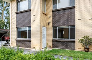 Picture of 3/46 Sussex Terrace, Westbourne Park SA 5041