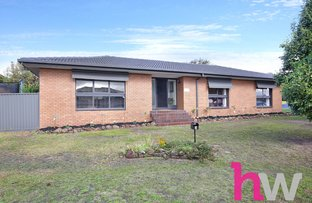 Picture of 3 Daventry Avenue, Grovedale VIC 3216