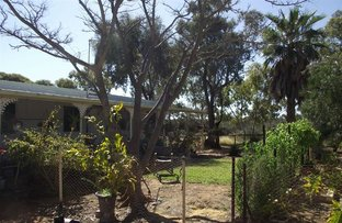 Picture of 94 Daly Street, Arrino WA 6519