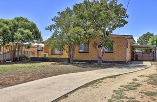 Picture of 469 Poictiers Street, Deniliquin NSW 2710