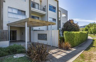 Picture of 3/12 Towns Crescent, Turner ACT 2612