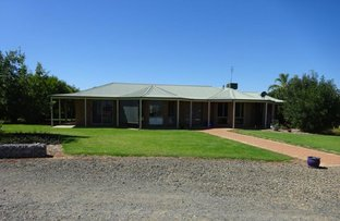 Picture of 894 COBB HIGHWAY, Moama NSW 2731