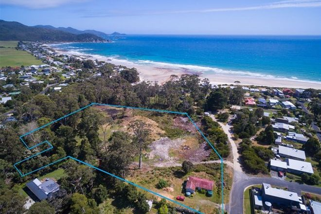 Picture of 34 Elfrida Avenue, SISTERS BEACH TAS 7321