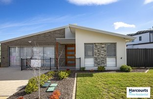 Picture of 159 Bettong Avenue, Throsby ACT 2914