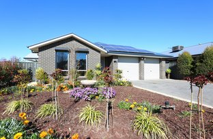 Picture of 12 Pinot Crescent, Nuriootpa SA 5355