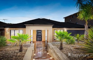 Picture of 5 Eden Court, South Morang VIC 3752
