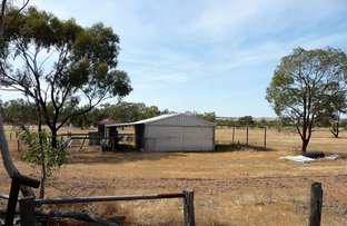 Picture of 3761 SPENCERS BROOK-YORK ROAD, York WA 6302