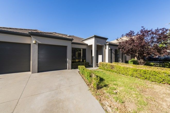 Picture of 17 Scrivener Street, O'CONNOR ACT 2602
