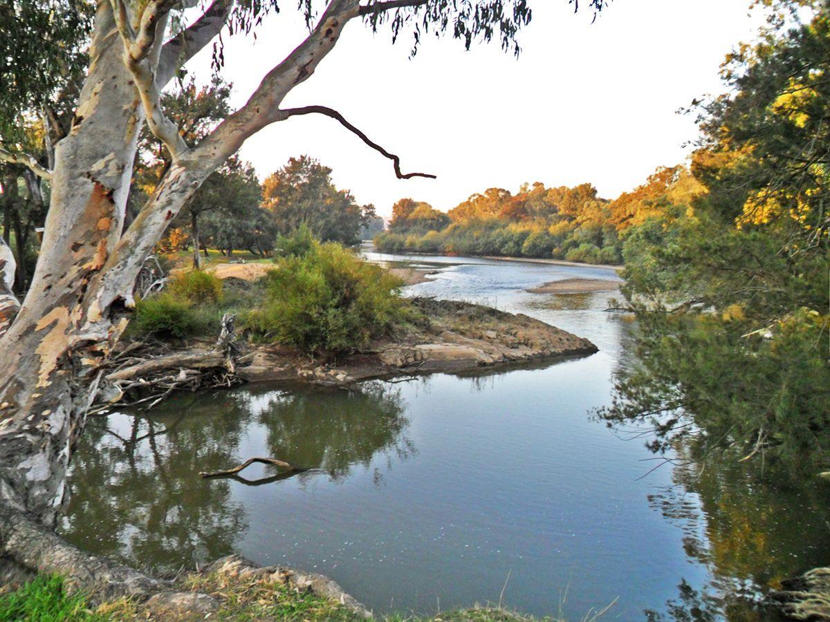 229 Brungle Road, Gundagai NSW 2722, Image 1