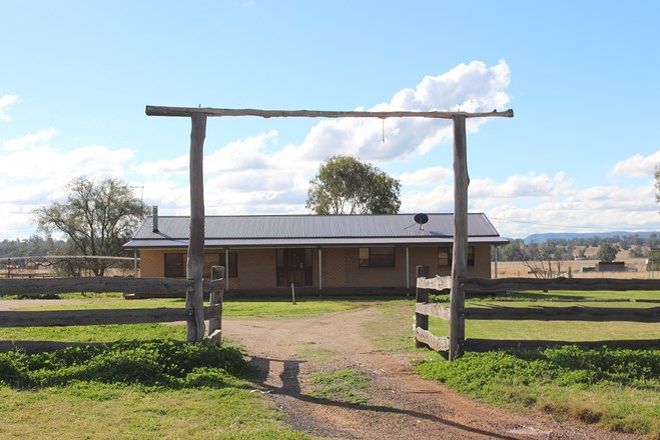 Picture of 4053 Elcombe Road, BINGARA NSW 2404