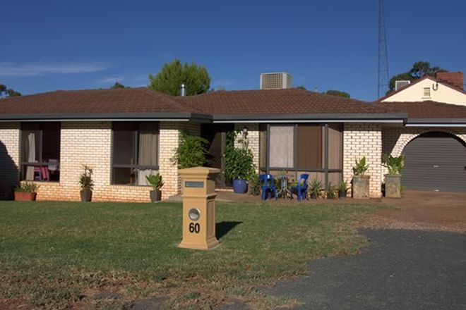 Picture of 60 Umang Street, TOTTENHAM NSW 2873