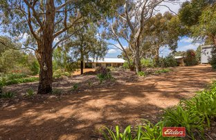 Picture of 3 Orient Road, Mount Barker WA 6324