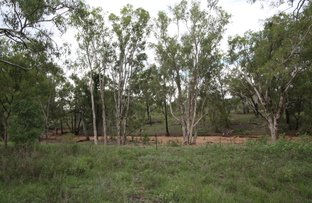 Picture of 552 Cherry Creek Rd, Seventy Mile QLD 4820