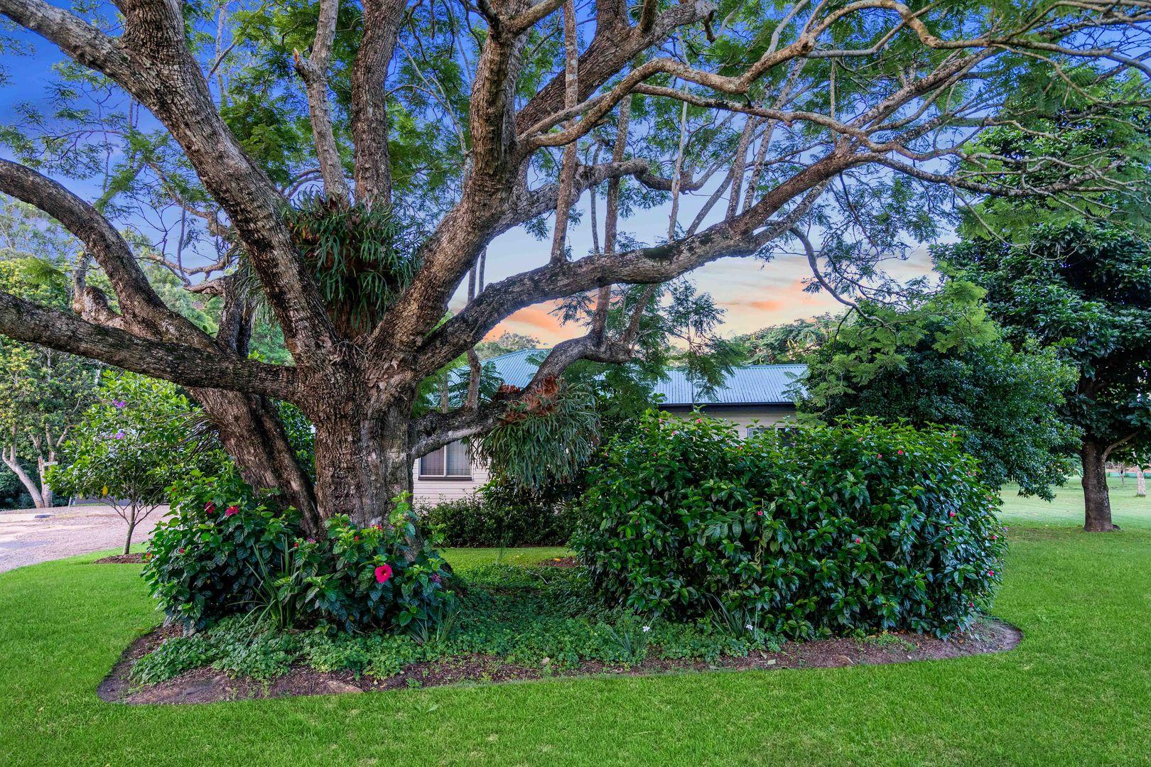 Kauri Estate via Shaws Road, Beerwah QLD 4519, Image 0