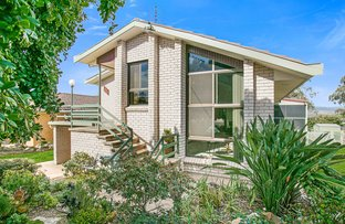 Picture of 41 McRae Street, Tamworth NSW 2340