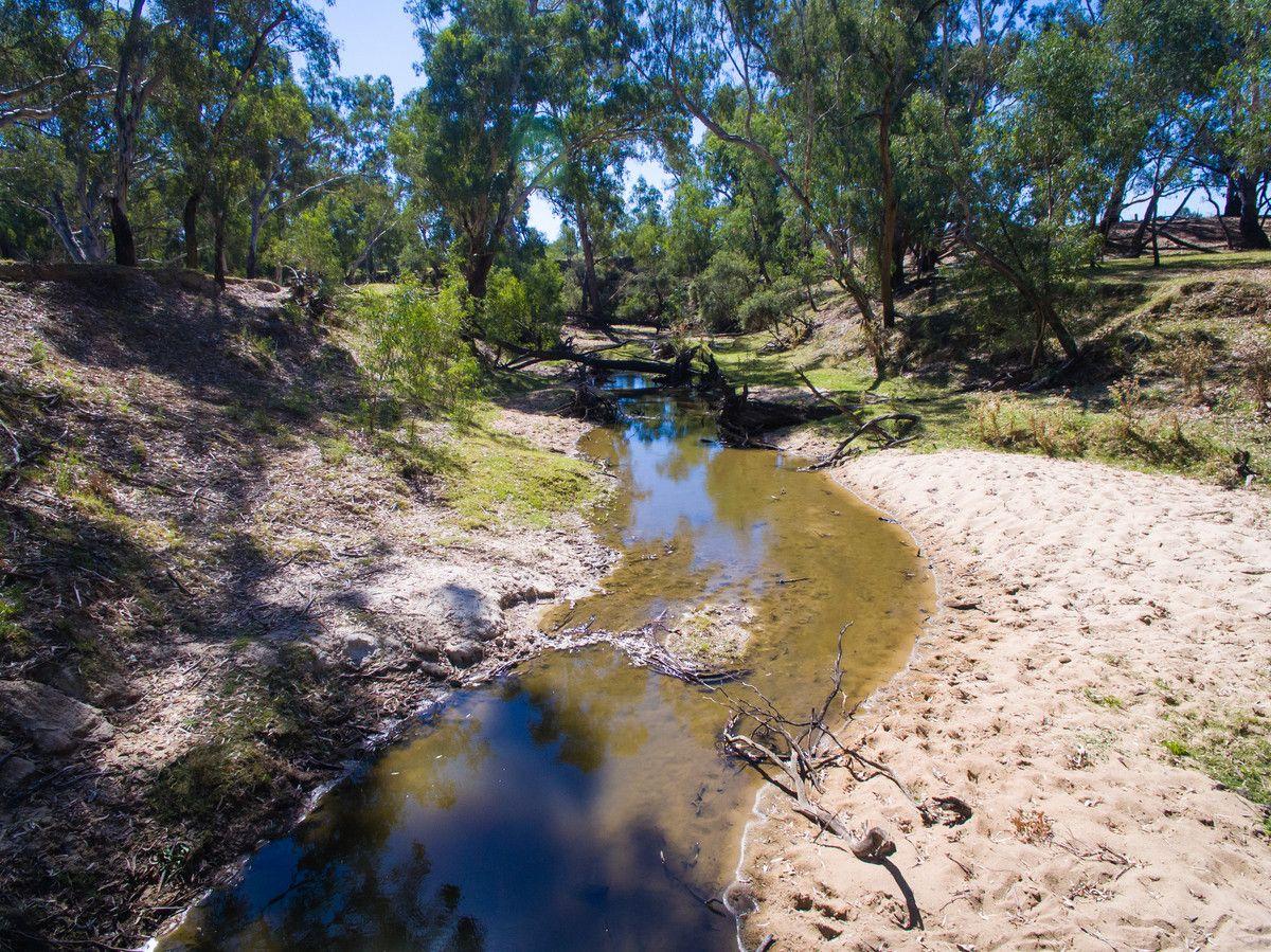 387 Ravenswood Road, Holbrook NSW 2644, Image 2