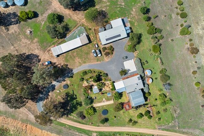 Picture of 971 Buckland Gap Rd, MURMUNGEE VIC 3747
