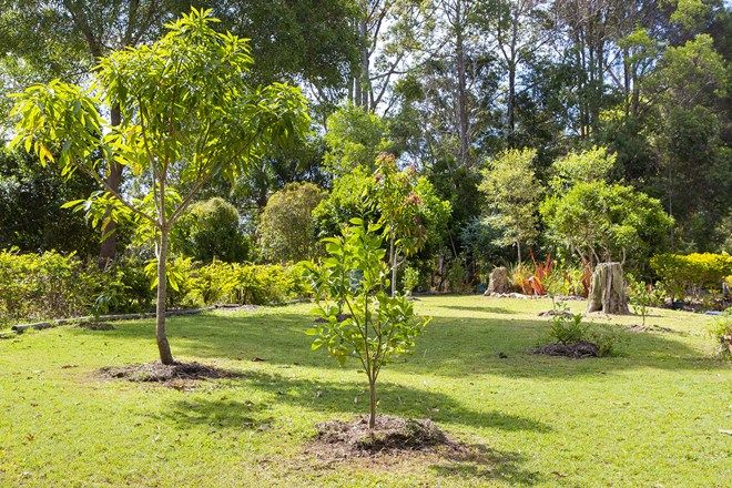 Picture of 105 Forest Acres Drive, LAKE MACDONALD QLD 4563