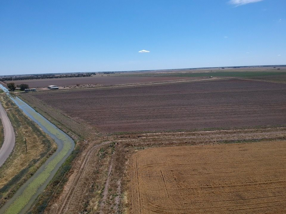 Farm 47/2072 Main Canal Road, Coleambally NSW 2707, Image 2