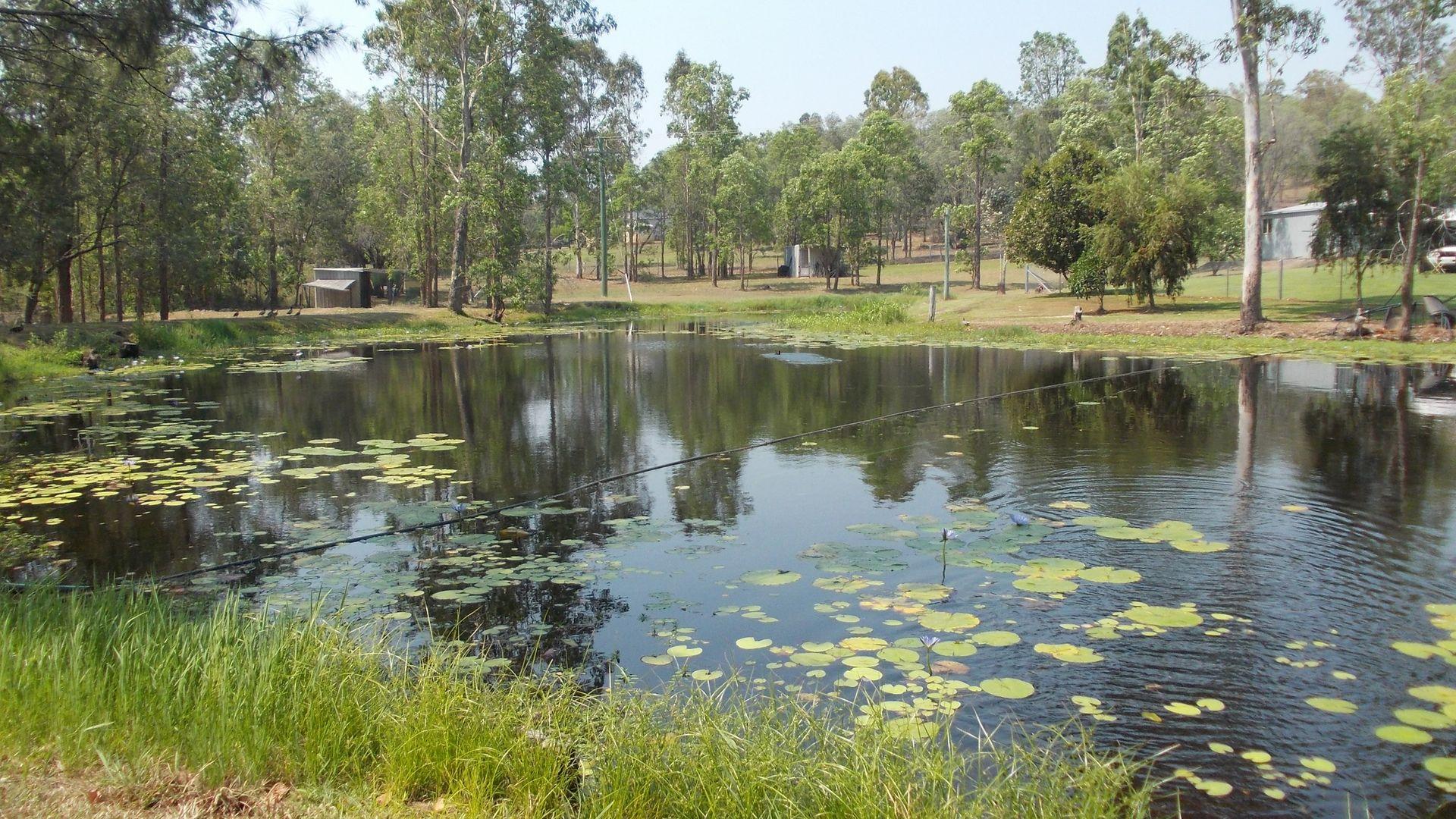 Gaeta QLD 4671, Image 1