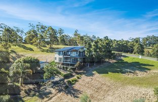 Picture of 58 Hilltop Parkway, Tallwoods Village NSW 2430