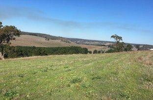 Picture of Lot 125 Golden Ash Rise, Kangaroo Gully WA 6255