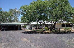 Picture of 609 Goodar Road, Goondiwindi QLD 4390