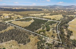 Picture of 549 Fogartys Gap Road, Walmer VIC 3463