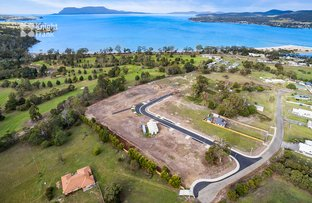 Picture of 54 Holkham Court, Orford TAS 7190