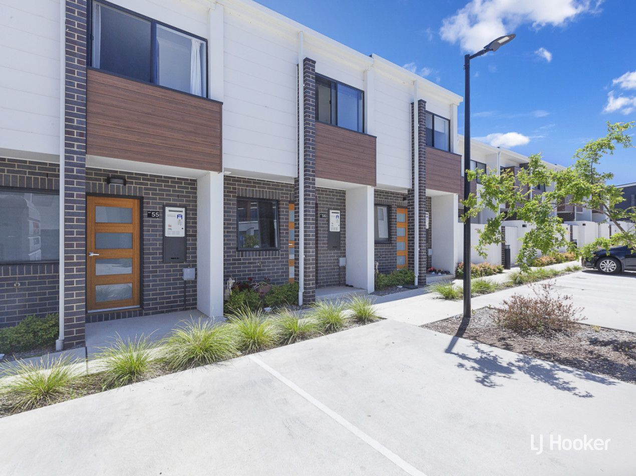 55/2 Rouseabout Street, Lawson ACT 2617, Image 0