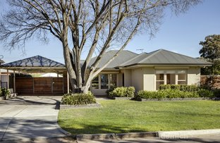 Picture of 14 Emery Road, Campbelltown SA 5074