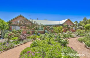 Picture of 22 Cowanna Avenue, Merbein VIC 3505
